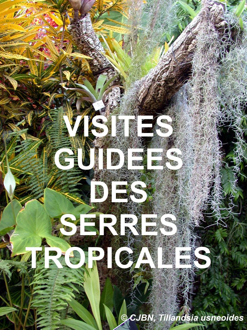 Visites guidées des serres tropicales au Jardin Botanique du Montet ...